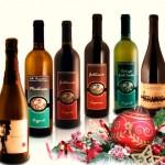 valigia 6 bottiglie - Offerta Natale 2015